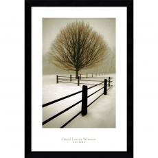 Landscapes - David Lorenz Winston Solitude Office Art