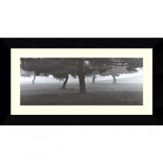 Richard Calvo Trees in the Fog Office Art