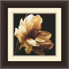 Flowers & Plants - Charles Britt Timeless Grace I Office Art