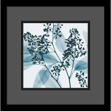 Steven N. Meyers - Steven N. Meyers Eucalyptus II Office Art