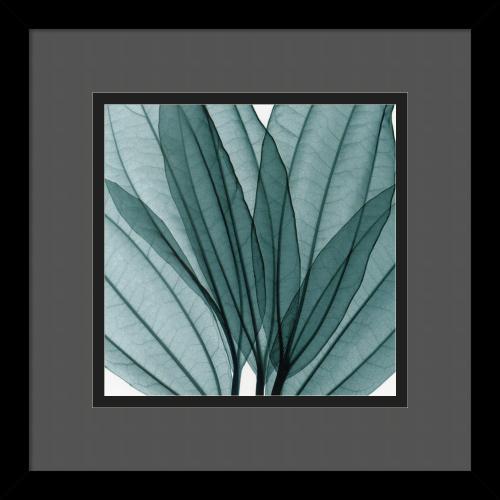 Steven N. Meyers Leaf Bouquet Office Art