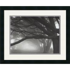 Mark Citret Cypresses, Skyline Drive, South San Francisco, 1996 Office Art