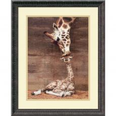 Animals - Ron D'Raine Makulu - Giraffe First Kiss Office Art