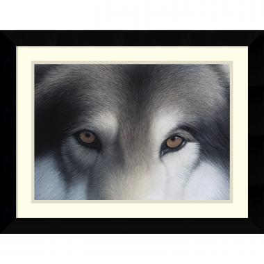 Charles Alexander Eyes of the Hunter: Gray Wolf Office Art