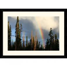 Andy Magee Alpine Rainbow Office Art