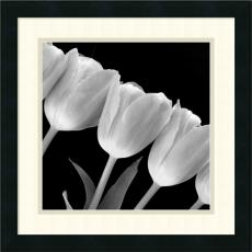 Black & White - Tulip Line Office Art
