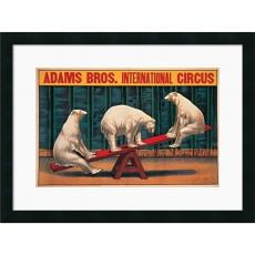Adams Bros Int'l Circus Office Art