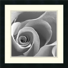 Black & White - Rose Spiral II Office Art