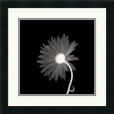 Sunburst Petals Office Art