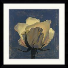 Curtis Parker Glowing White Rose Office Art