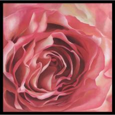 Leni Bates The Rose's Petals Office Art