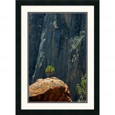 Andy Magee Black Canyon Pinon Office Art