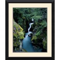 William Neill Avalanche Creek Office Art