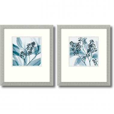 Steven N. Meyers Silver Eucalyptus - set of 2 Office Art