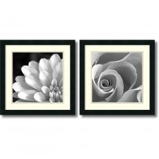 Pretty Petals - set of 2 Office Art