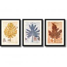 Craig Alan Harvest Trio - set of 3 Office Art