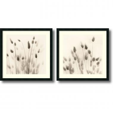 Alan Blaustein Italian Tall Grass - set of 2 Office Art