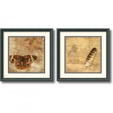 Susan Friedman Moth and Owl Feather - set of 2 Office Art
