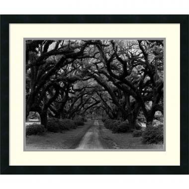 Monte Nagler Path in the Oaks #2, Louisiana Office Art