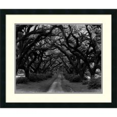 Fine Art - Monte Nagler Path in the Oaks #2, Louisiana Office Art