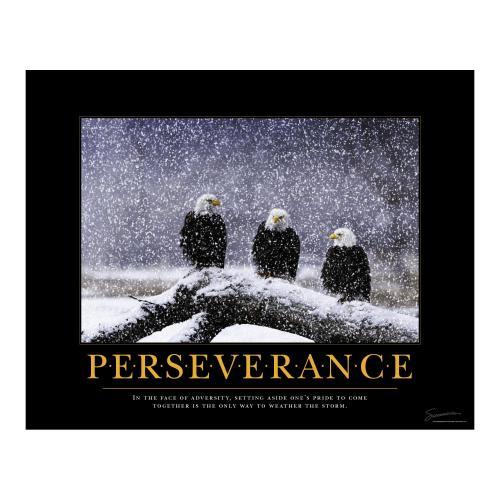 Successories Perseverance Eagles Motivational Poster