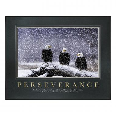 Perseverance Eagles Motivational Poster