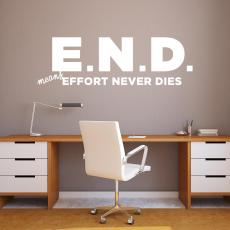 Vinyl Wall Decals - E.N.D. Vinyl Wall Decal