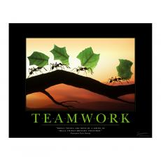 All Motivational Posters - Teamwork Ants Motivational Poster