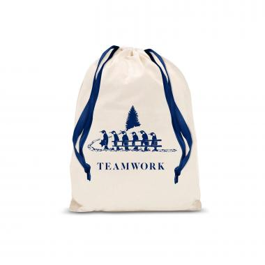 Teamwork Penguins Small Drawstring Gift Bag