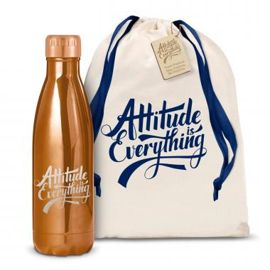 Attitude is Everything 17oz Shimmer Swig