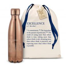 Swells & Swigs - Excellence Definition 17oz Shimmer Swig
