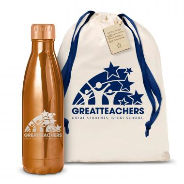 Great Teachers 17oz Shimmer Swig