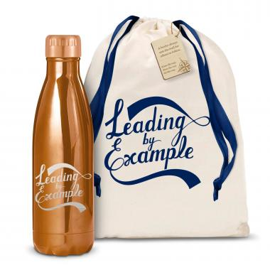 Leading by Example 17oz Shimmer Swig
