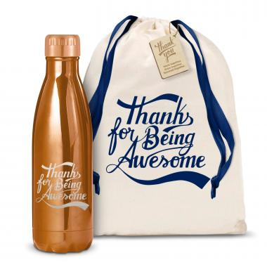 Thanks for Being Awesome 17oz Shimmer Swig