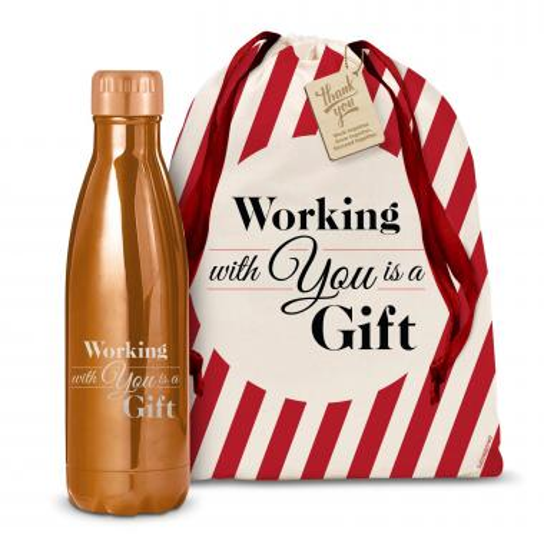 Holiday Gift 17oz Shimmer Swig
