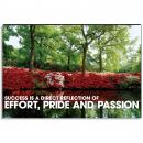 Excellence Azalea Inspirational Art
