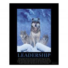 Motivational Posters - Leadership Wolves Motivational Poster