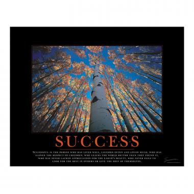 Success Tree Motivational Poster