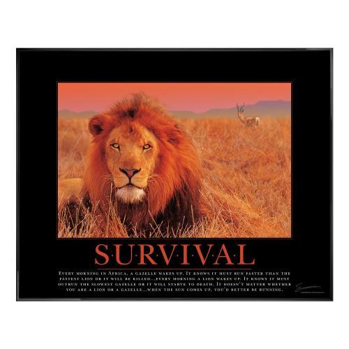 Survival Lion Motivational Poster