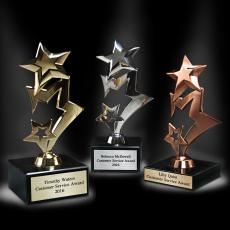 Metal, Stone and Cast Awards - Shoot for the Stars Award