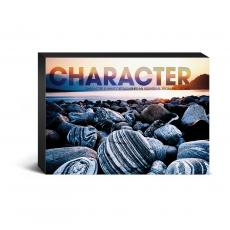 Entire Collection - Character Beach Desktop Canvas