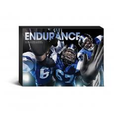 Entire Collection - Endurance Football Tackle Desktop Canvas