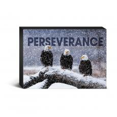 Entire Collection - Perseverance Eagles Desktop Canvas