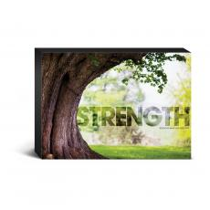 Entire Collection - Strength Tree Desktop Canvas