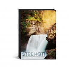 Entire Collection - Strength Waterfall Desktop Canvas