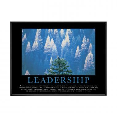 Leadership Eagle Mini Motivational Poster