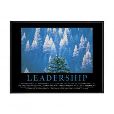 Mini Motivational Posters - Leadership Eagle Mini Motivational Poster