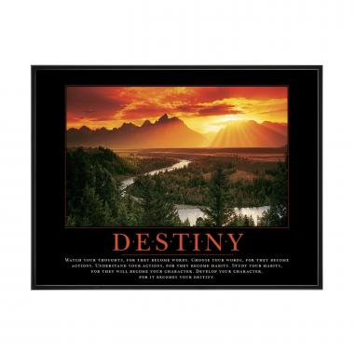 Destiny River Mini Motivational Poster