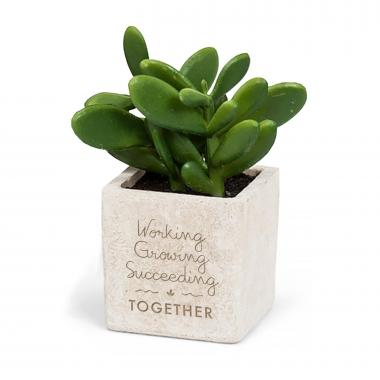Personalized Mini Stone Succulent