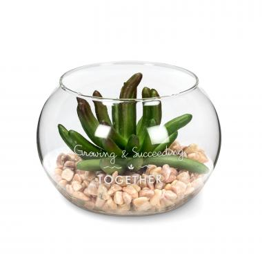 Personalized Glass Succulent